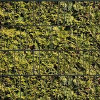 Lebensbaum - Bedruckte Sichtschutzrolle für Mattenzaun
