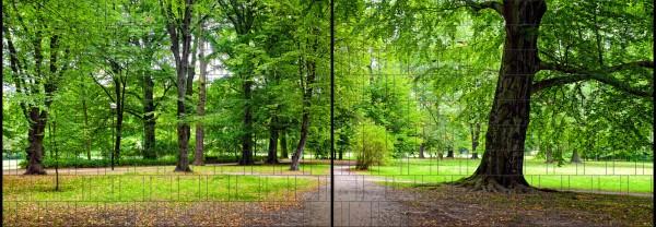 Park - Panorama XL bedruckte Sichtschutzstreifen für Doppelstabmattenzaun