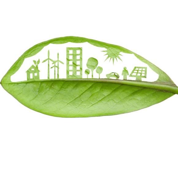 zaundruck sichtschutzstreifen nachhaltig produziert
