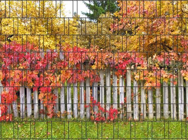 Rügen - Bedruckter Sichtschutz Streifen Rolle Doppelstab Zaun