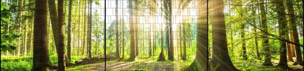 Wald - Panorama XXL bedruckte Sichtschutzstreifen für Doppelstabmattenzaun