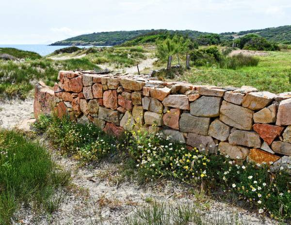 Zaunposter & Gartenposter Küstenlandschaft