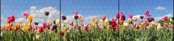 Tulpen - Panorama XXL bedruckte Sichtschutzstreifen für Doppelstabmattenzaun