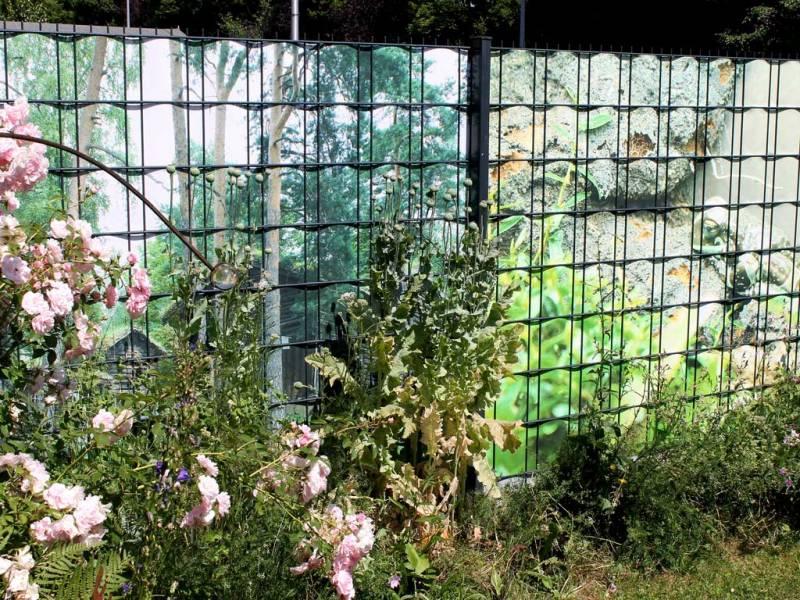 Zaun Sichtschutz eigenes Motiv Waldgebiet
