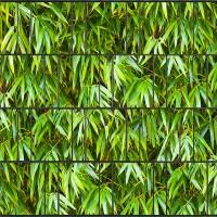 Bambusblätter - Bedruckter Sichtschutz für Doppelstab Zaun